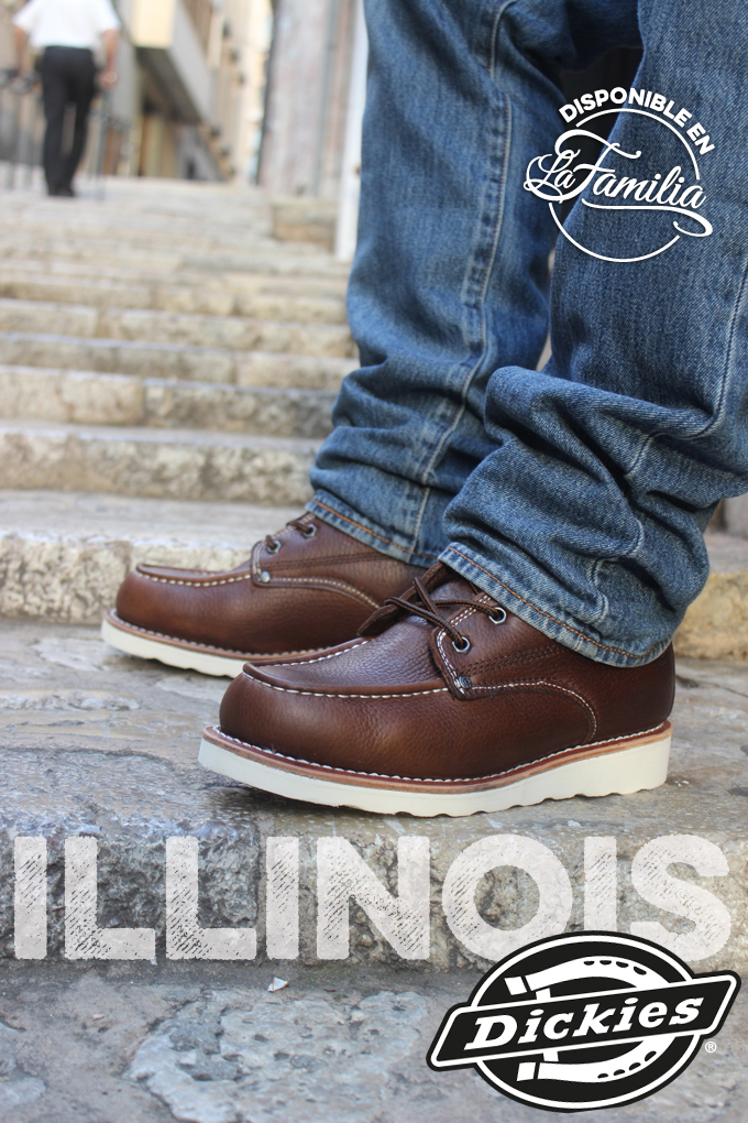 illinoisdickies